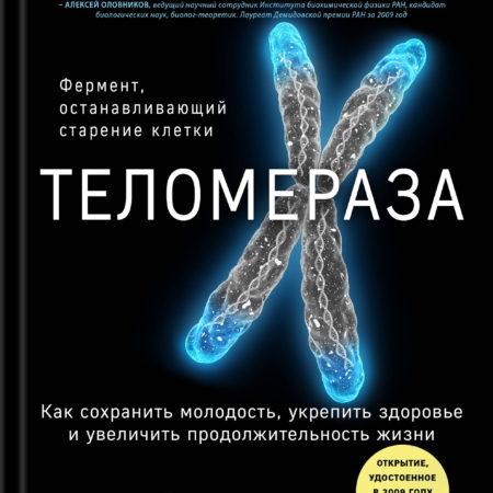 Теломераза. Как сохранить молодость