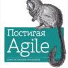 Постигая Agile. Ценности