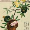Китайская живопись. Цветы и птицы. Набор открыток