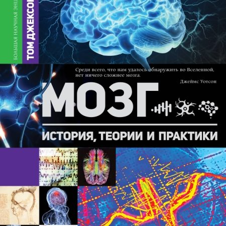 Мозг. История